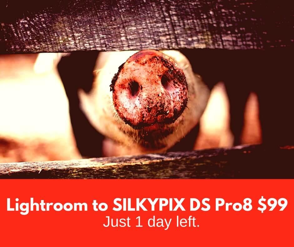 http://www.mirye.net/images/silkypix8/promos/1days_silkypixdspro8_99_facebookpost.jpg