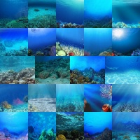 Ocean Floors Backgrounds Volume 1